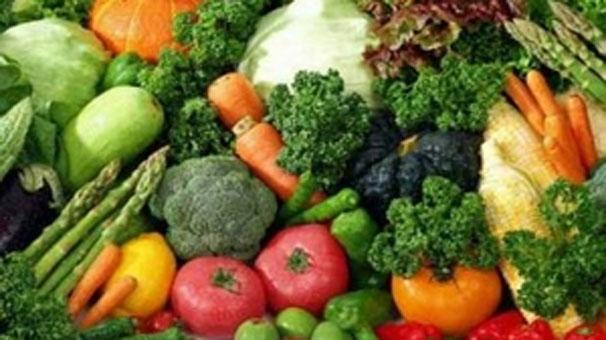türkiye organik tarım üretimi