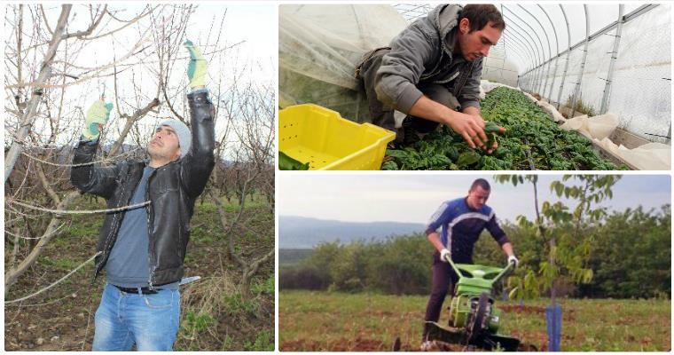 Genç çiftçilerin desteklenmesi tebliği