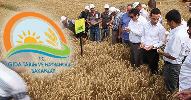 tarım bakanlığı personel alımı