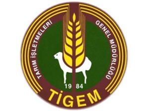 tigem-logo